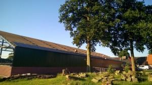 Werkzaamheden nieuw dak